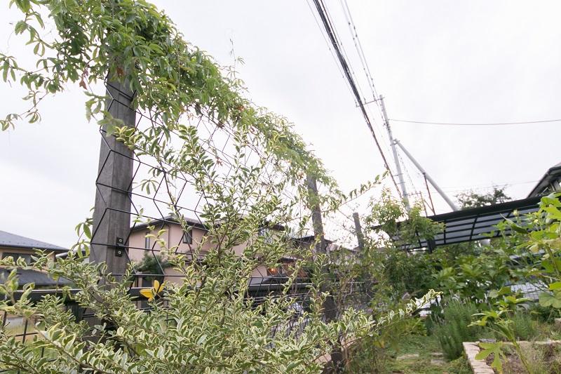 ダンク_高部様邸_四街道市めいわ (7)