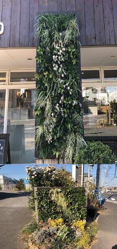*壁面緑化 in 四街道ショールーム*